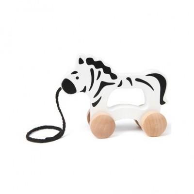 Zebra plimbareata HAPE