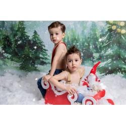 Pachet Foto - Silver Christmas